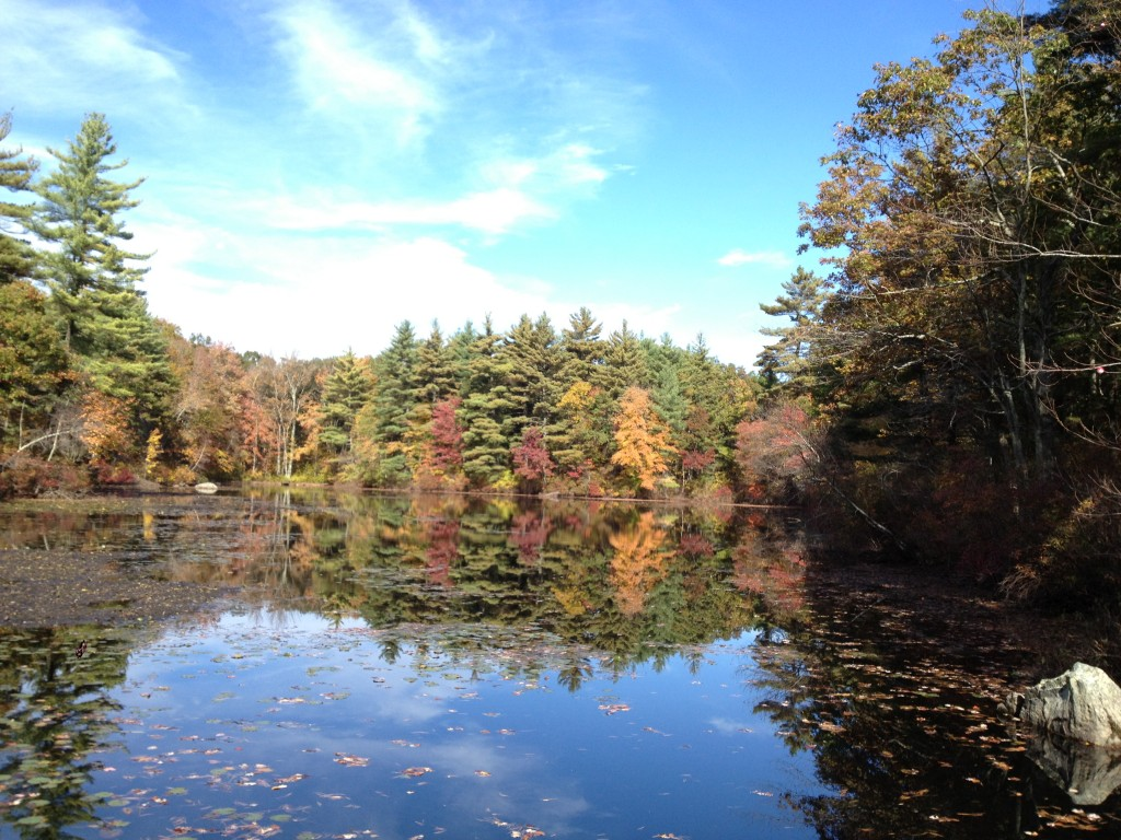 Noon Hill Pond