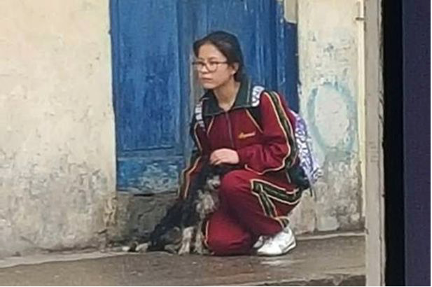 Heart Touching Photo Shows Schoolgirl Shielding Stray Dog From The Rain