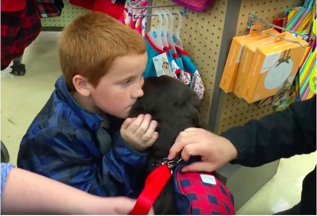 Boy Who Wanted Service Dog Saves $2,000 in Pennies To Make His Dream Possible