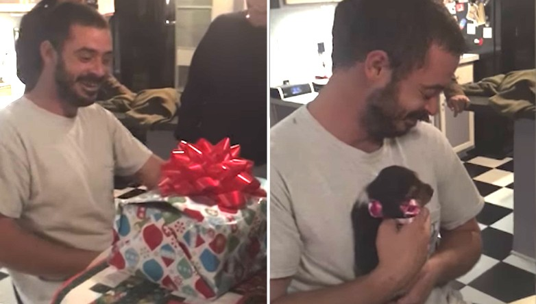 Watch: Military Veteran Gets The Perfect Christmas Present To Help Him Heal